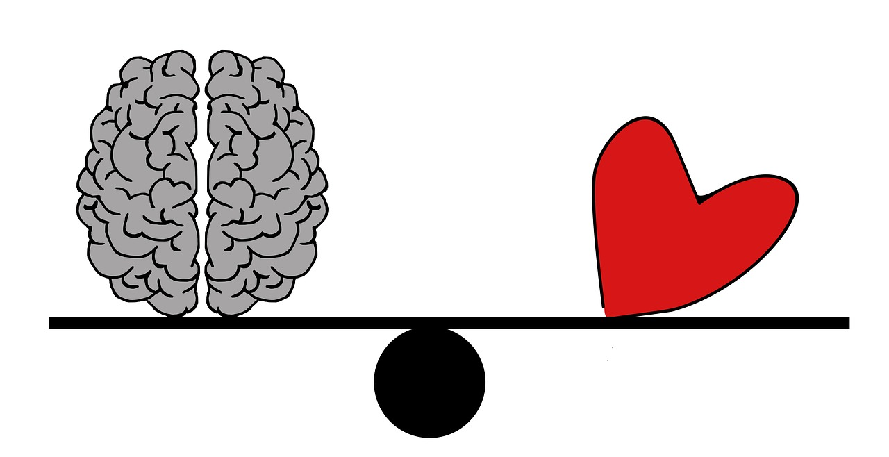 brain-2146156_1280